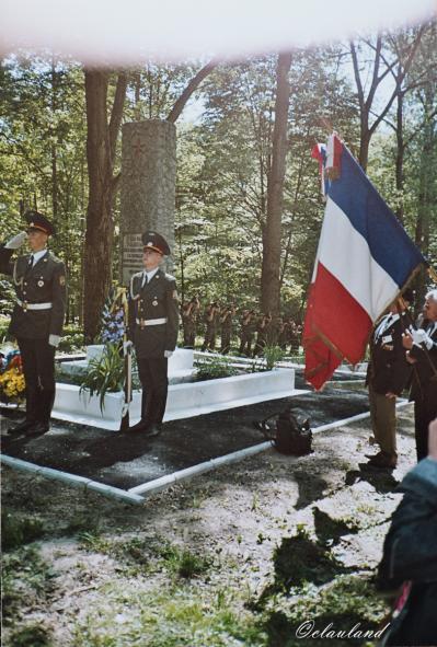 2003 rawa 48