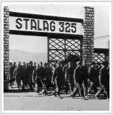 Stalag325 1
